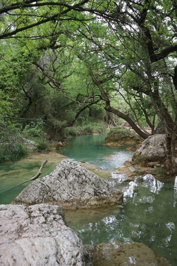 Bassins et végétation à Sillans-la-cascade dans le Haut-Var